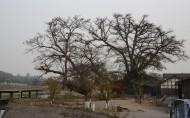 石象湖风景图片(9张)