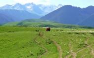 喀拉峻草原风景图片(21张)
