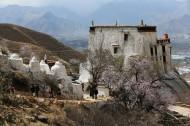 西藏帕崩岗风景图片(11张)