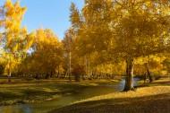 新疆阿勒泰风光图片(8张)