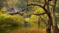 广西桂林逍遥湖风景图片(10张)