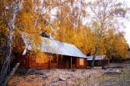 新疆阿勒泰白哈巴风景图片(12张)