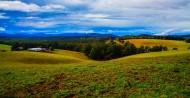 澳大利亚墨尔本郊外农场风景图片(14张)