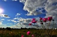 内蒙古锡林郭勒盟赛汗塔拉草原风景图片(20张)