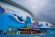 东北哈尔滨极地馆图片(5张)