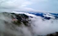 雾锁阳明山风景图片(8张)