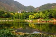 北京植物园风景图片(11张)