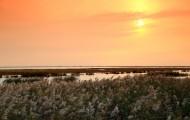 天津大港湿地公园夕阳风景图片(9张)