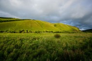 内蒙古呼伦贝尔草原风景图片(16张)