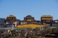 云南香格里拉松赞林寺图片(16张)