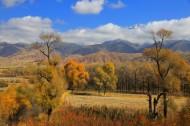 青海黑河大峡谷的秋日风景图片(8张)