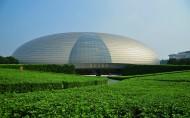 北京国家大剧院图片(8张)