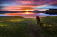 新疆赛里木湖晨曦风景图片(8张)