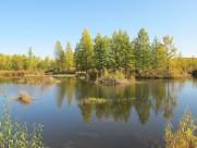 内蒙古呼伦贝尔草原风景图片(9张)