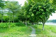 广东顺德顺峰山公园风景图片(29张)