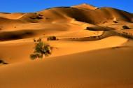 内蒙古库布齐沙漠风景图片(32张)