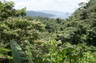 美国哥斯达黎加热带雨林风景图片(11张)