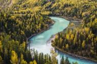 新疆喀纳斯秋天风景图片(17张)