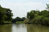 杭州西溪国家湿地公园风景图片(16张)