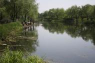 江湾湿地风景图片(6张)