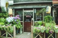 温馨的街角花店图片(8张)