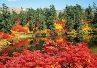 北海道秋季景色图片(10张)
