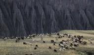 新疆奎屯风景图片(9张)
