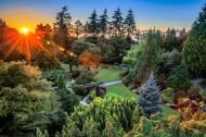 加拿大温哥华女皇公园风景图片(6张)