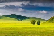 乌兰布统的夏季风景图片(13张)