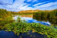 新疆白沙湖风景图片(8张)