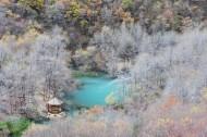 四川松坪沟风景图片(11张)