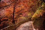 甘肃兰州兴隆山秋季风景图片(17张)