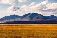 新疆巴音布鲁克风景图片(10张)
