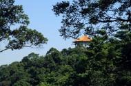 广东广州帽峰山风景图片(9张)