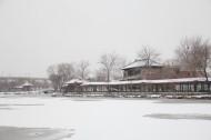 天津北宁公园雪景图片(23张)