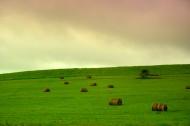 内蒙古阿尔山国家森林公园风景图片(21张)