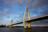 海南海口世纪大桥图片(12张)