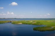 齐齐哈尔扎龙自然保护区图片(17张)