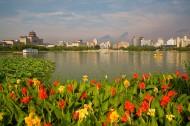 北京市莲花池公园图片(6张)