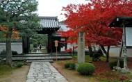 京都圆光寺图片(22张)