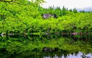 吉林长白山风景图片(13张)