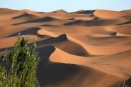 新疆库木塔格沙漠风景图片(11张)