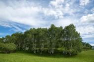 河北木兰围场风景图片(15张)