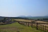 韩国济州岛风景图片(20张)