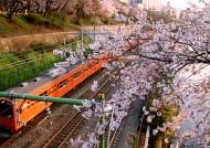 东京城市图片(30张)