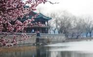 北京颐和园风景图片(20张)