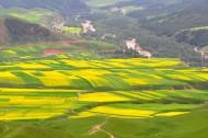 青海卓尔山风景图片(14张)