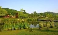 安徽芜湖风景图片(11张)