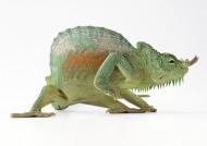 蜥蜴图片(66张)