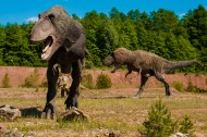 白垩纪时期的恐龙图片(15张)